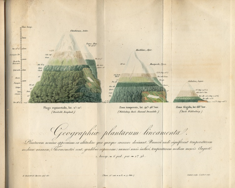 An 1817 Humboldt manuscript showing a geographic distribution of plants.  APS Museum